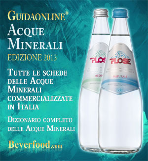GuidaOnLine Acque Minerali Beverfood