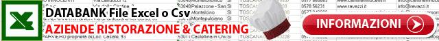 Catering Ristorazione Databank excel xls csv Dati Indirizzi e-mail Aziende Beverage Bevande Tabella Campi records