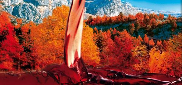 MEZZACORONA pubblicità vino ed autunno